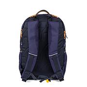 Aspen 3.0 - LIONS royal blue