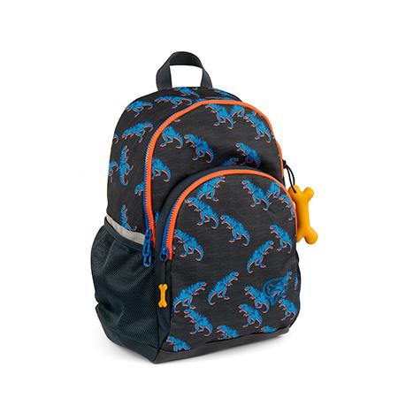 STONES and BONES | Back To School | Linden - T-REX PACK
