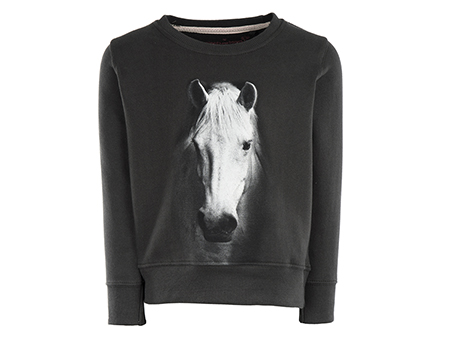 Violeta - HORSE
