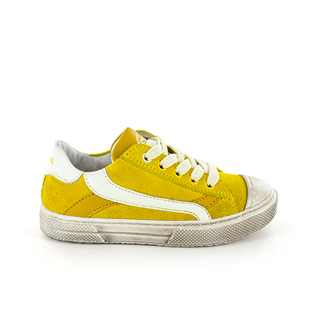 MAUST crs yellow + ivor