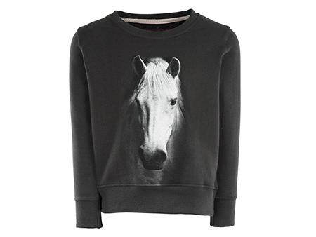 Violeta - HORSE antracit