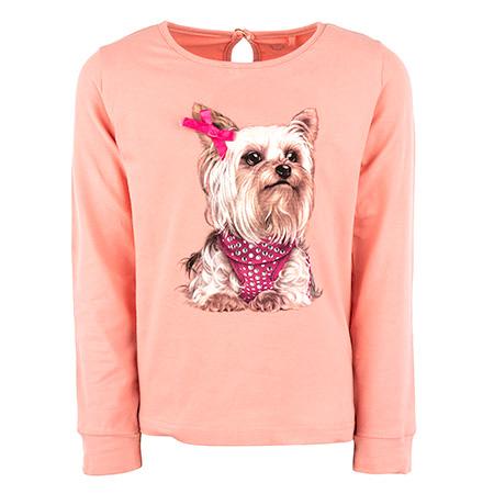 Amber - DOG pink