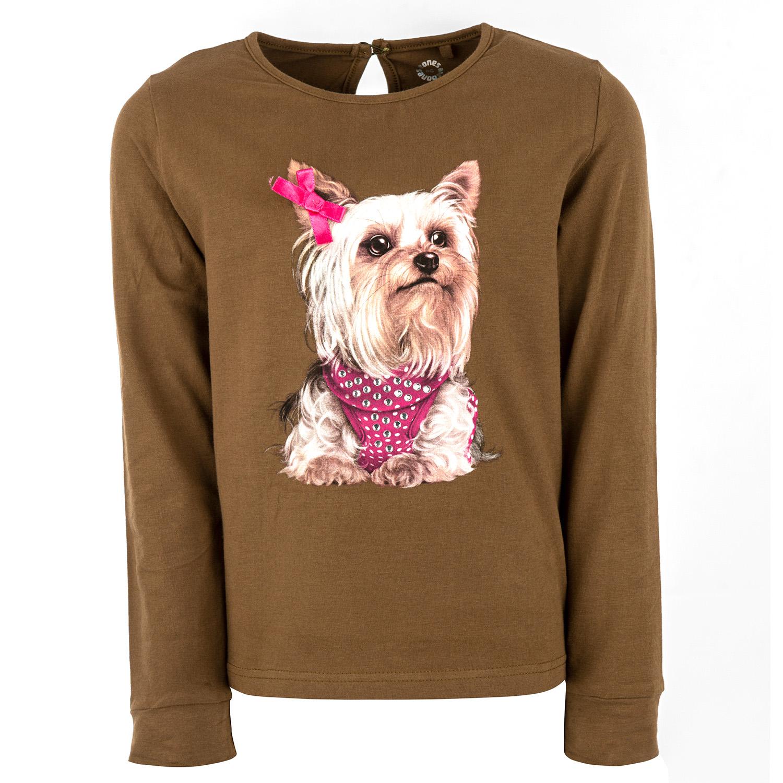 Amber - DOG khaki